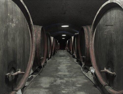 Sulful din vin